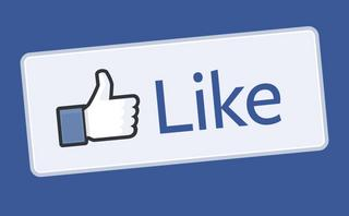 A 'Like' button on your website? Then you are a joint data controller with Facebook