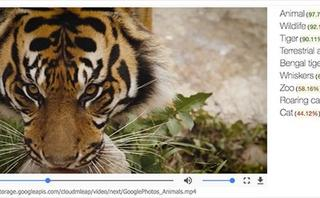 YouTube launches next phase of program to tag items within video clips